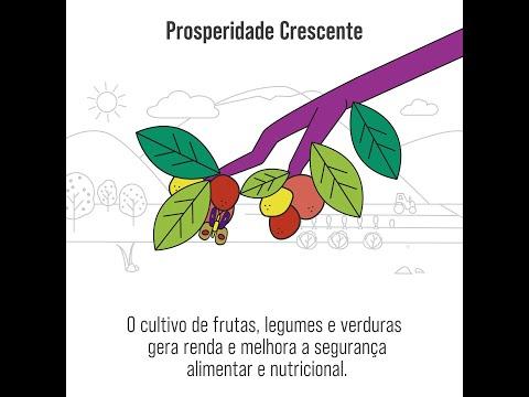 2021, Ano Internacional das Frutas, Legumes e Verduras