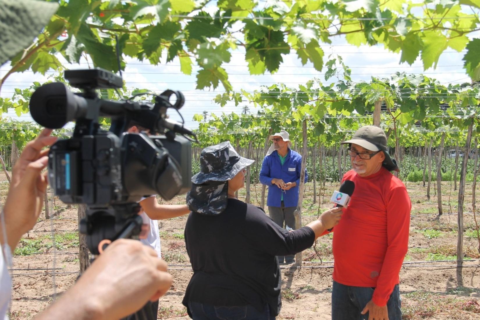 Serão R$ 70 mil em prêmios para trabalhos jornalísticos veiculados em rádio, TV, impresso e internet até 05 de maio de 2021, sobre boas práticas rurais.
