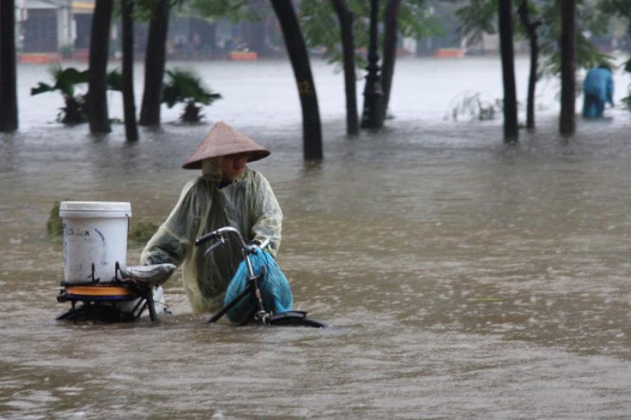 Eventos climáticos extremos foram registrados em vários locais do mundo, como chuvas intensas, secas e incêndios